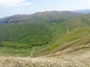 valea_din_stanga-cazacu