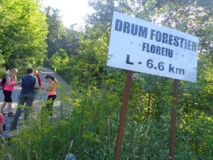 Valea_Floreiului_Florei4