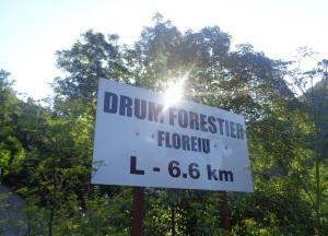 Valea_Floreiului_Florei2