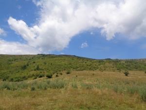 Muntele_Florei4